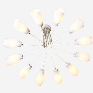 12-Arm Saalleuchter, mehrere vorhanden Deckenlampe